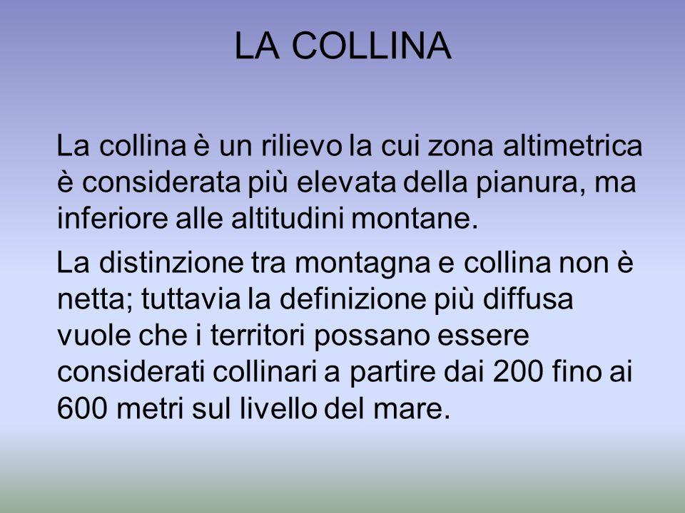 LA COLLINA La collina è un rilievo la cui zona altimetrica è considerata più elevata della pianura, ma inferiore alle altitudini montane. La distinzio