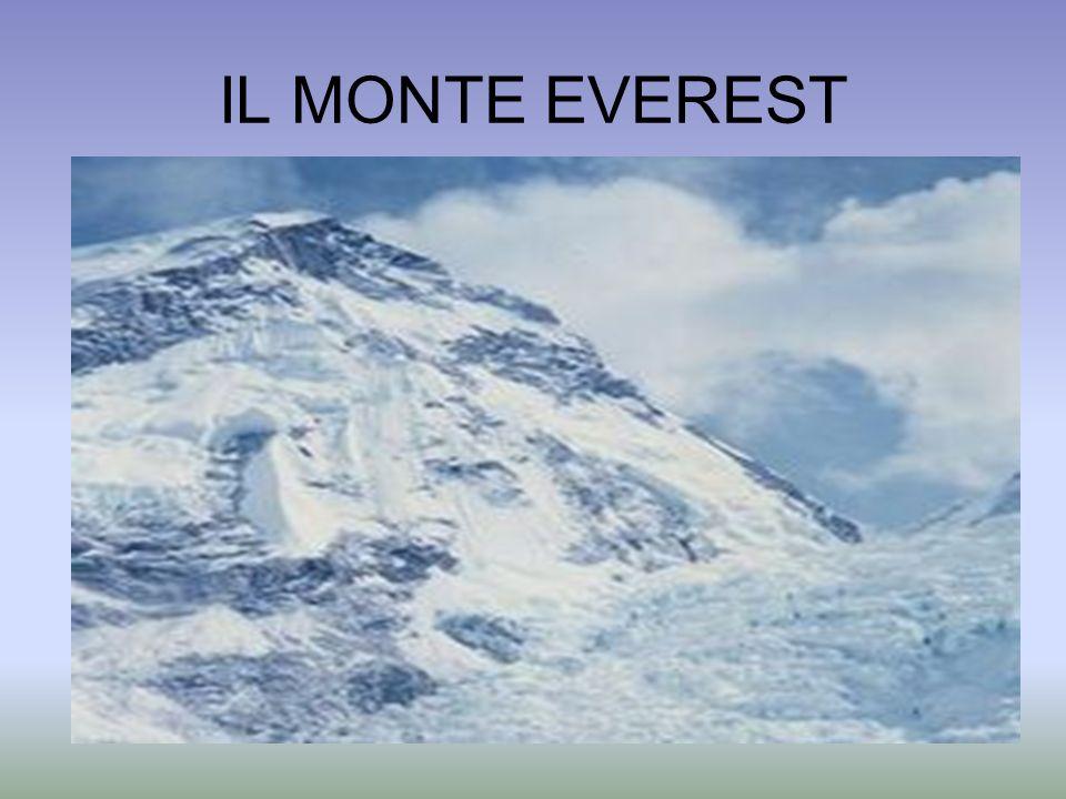 FRANCESCO PETRARCA: Ascensione al monte Ventoso Io su, per lerta montana via, con passo più moderato mindirizzavo; ma il fratel mio, per una scorciatoia inerpicandosi su per il monte, tendeva più in alto.