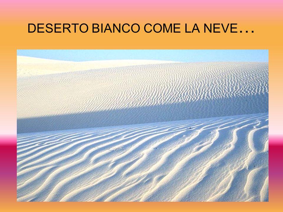 DESERTO BIANCO COME LA NEVE …