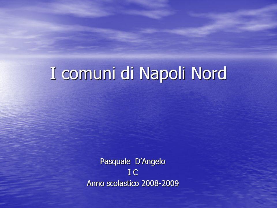 I comuni di Napoli Nord Pasquale DAngelo I C Anno scolastico 2008-2009