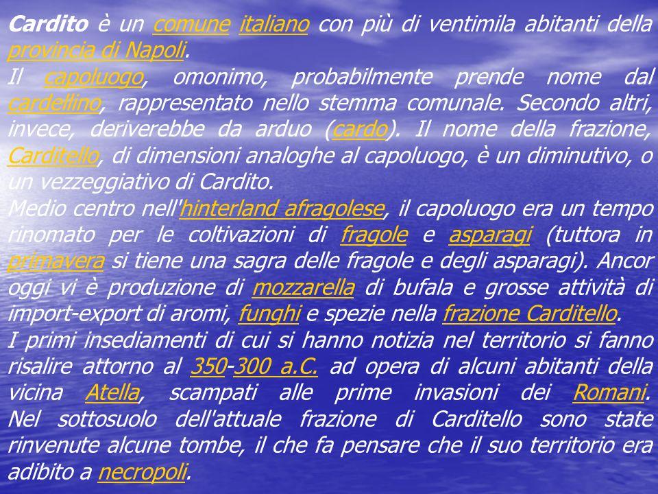 Cardito è un comune italiano con più di ventimila abitanti della provincia di Napoli.comuneitaliano provincia di Napoli Il capoluogo, omonimo, probabilmente prende nome dal cardellino, rappresentato nello stemma comunale.
