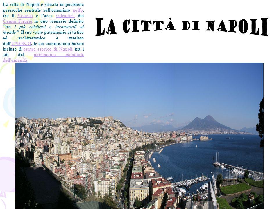 La città di Napoli è situata in posizione pressoché centrale sull'omonimo golfo, tra il Vesuvio e l'area vulcanica dei Campi Flegrei in uno scenario d