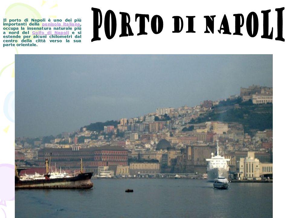 Il porto di Napoli è uno dei più importanti della penisola italiana, occupa la insenatura naturale più a nord del Golfo di Napoli e si estende per alc