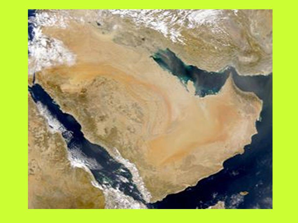 Oasi La posizione di un oasi è di importanza critica per le rotte commerciali e di trasporto delle aree desertiche.