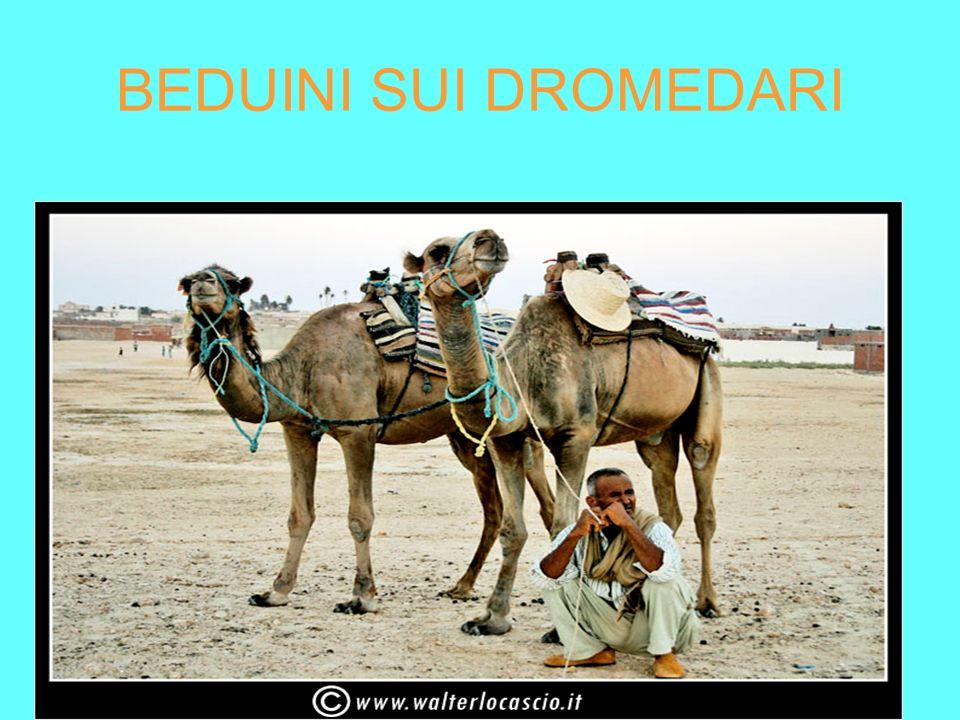 La vita dei beduini Scrive lo storico Giorgio Cracco: I beduini imparano ben presto la difficile arte di sopravvivere nonostante l ambiente: mangiano poco, si vestono di poco, sanno resistere alla sete, si riducono a un fascio di nervi e di ossa, con la pelle scarna e arida come la sabbia che li avvolge.