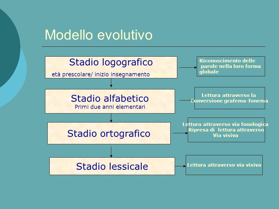Parola scritta Sistema di analisi visiva Conversione Grafema fonema Lessico di entrata ortografico Sistema semantico Lessico di uscita fonologico Buff