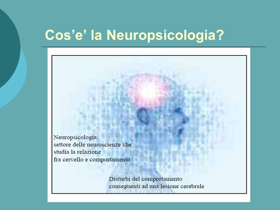CERVELLO: ULTIMA FRONTIERA LEsplorazione del cervello costituisce la frontiera più avanzata della conoscenza umana: la controparte interiorizzata dell