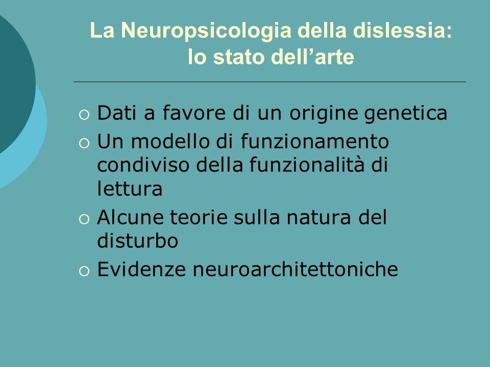 La Neuropsicologia della dislessia: lo stato dellarte Dati a favore di un origine genetica Un modello di funzionamento condiviso della funzionalità di lettura Alcune teorie sulla natura del disturbo Evidenze neuroarchitettoniche