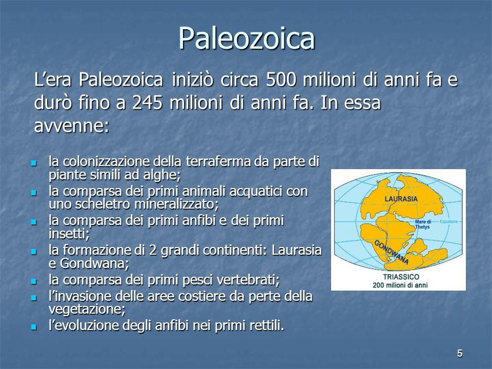 5Paleozoica la colonizzazione della terraferma da parte di piante simili ad alghe; la colonizzazione della terraferma da parte di piante simili ad alg