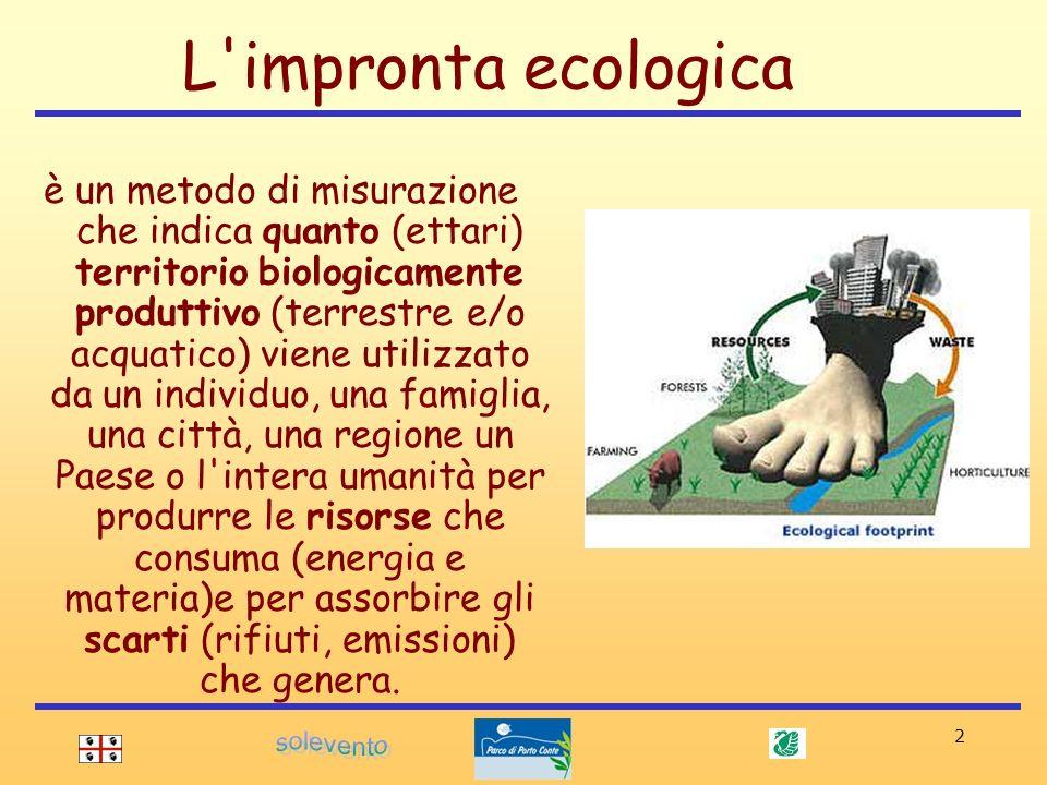 2 è un metodo di misurazione che indica quanto (ettari) territorio biologicamente produttivo (terrestre e/o acquatico) viene utilizzato da un individu