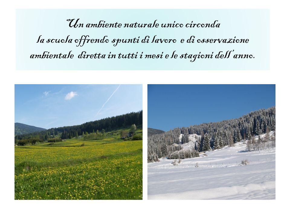 Un ambiente naturale unico circonda la scuola offrendo spunti di lavoro e di osservazione ambientale diretta in tutti i mesi e le stagioni dellanno.