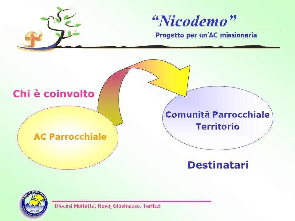 Nicodemo Progetto per unAC missionaria Diocesi Molfetta, Ruvo, Giovinazzo, Terlizzi Comunità Parrocchiale Territorio Chi è coinvolto Destinatari AC Pa