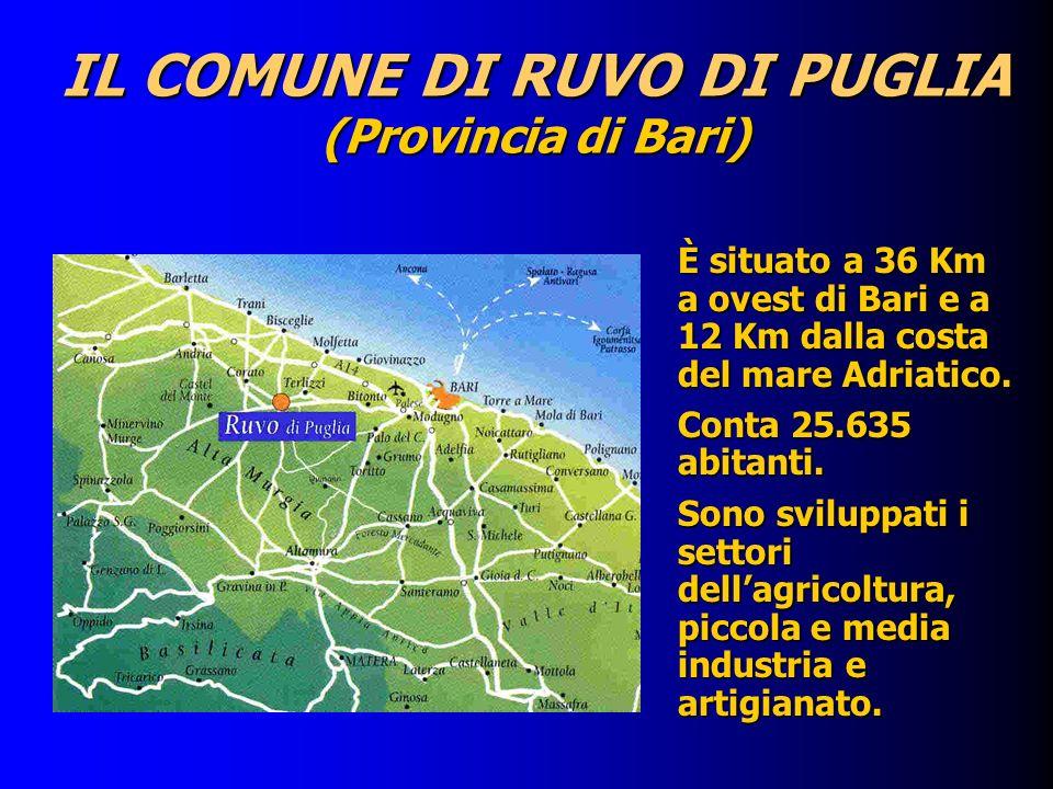 IL COMUNE DI RUVO DI PUGLIA (Provincia di Bari) È situato a 36 Km a ovest di Bari e a 12 Km dalla costa del mare Adriatico. Conta 25.635 abitanti. Son