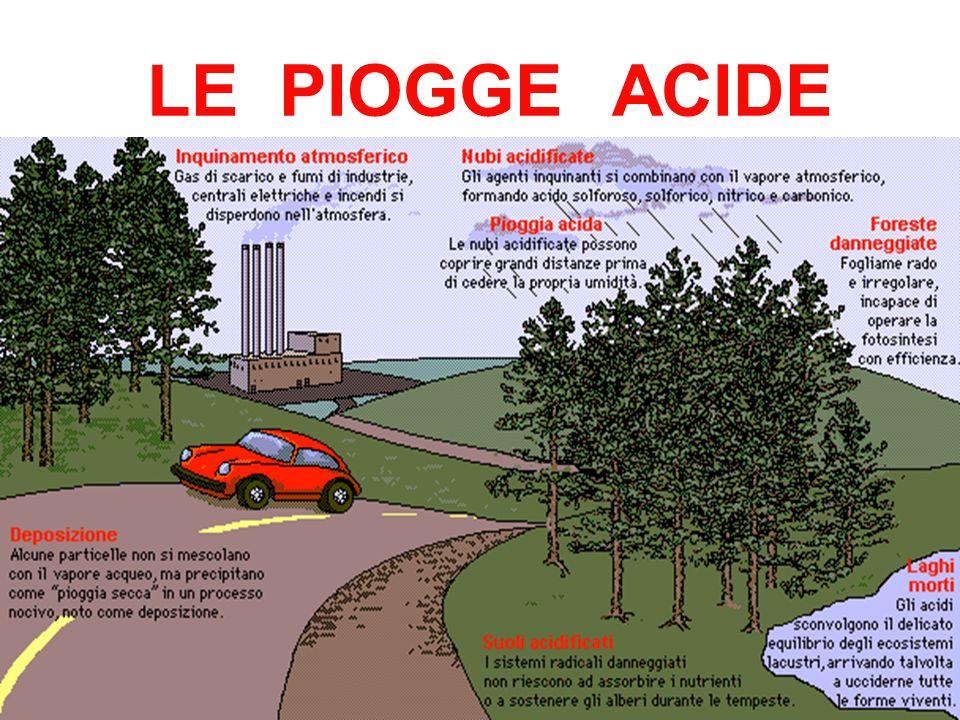 LE PIOGGE ACIDE