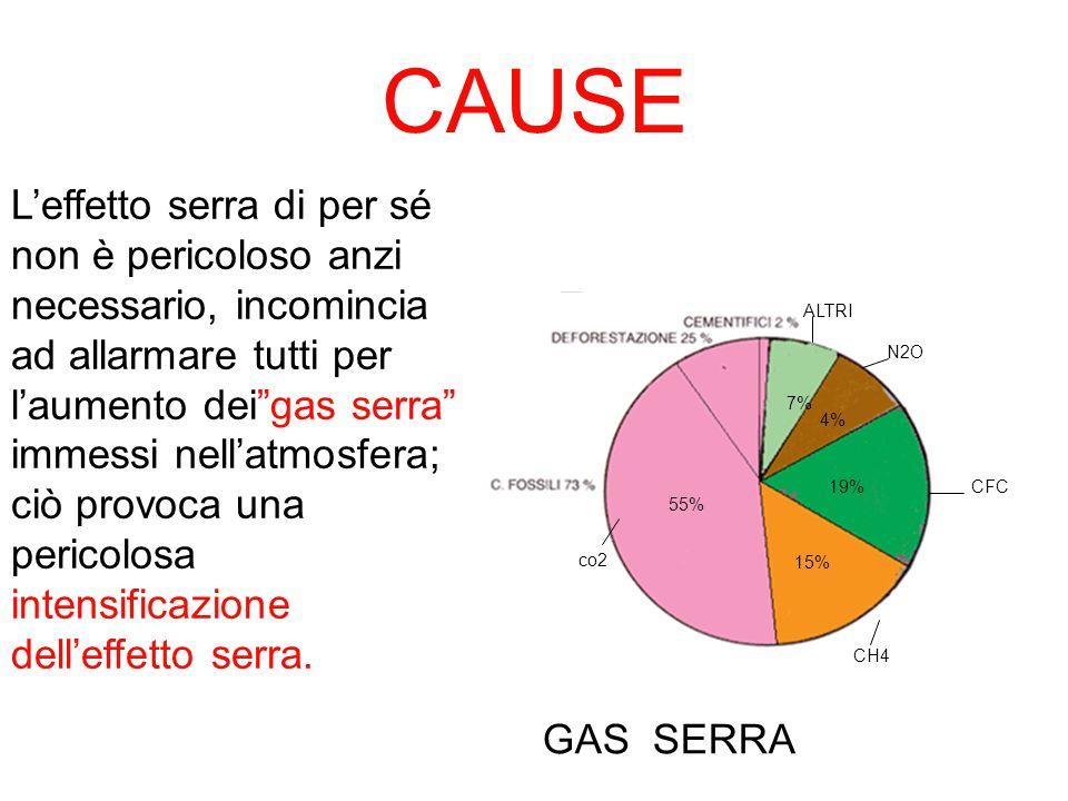 CAUSE co2 CH4 CFC N2O ALTRI 55% 15% 19% 4% 7% GAS SERRA Leffetto serra di per sé non è pericoloso anzi necessario, incomincia ad allarmare tutti per l