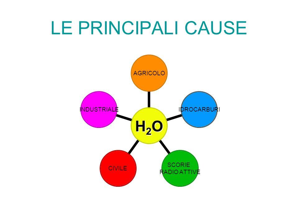 LE PRINCIPALI CAUSE H2O AGRICOLOIDROCARBURI SCORIE RADIO ATTIVE CIVILEINDUSTRIALE