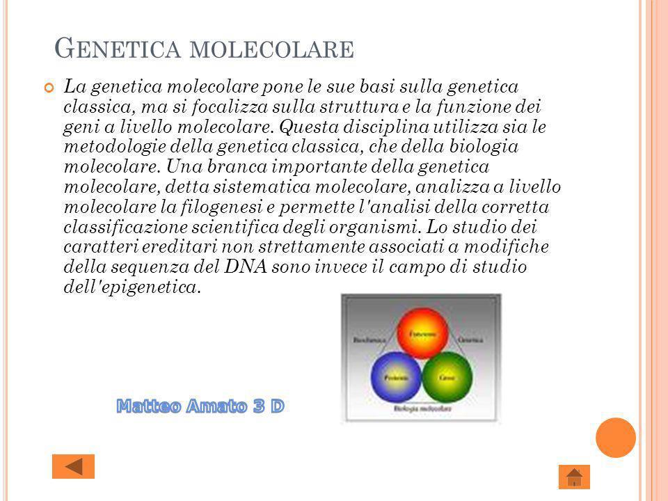 G ENETICA MOLECOLARE La genetica molecolare pone le sue basi sulla genetica classica, ma si focalizza sulla struttura e la funzione dei geni a livello