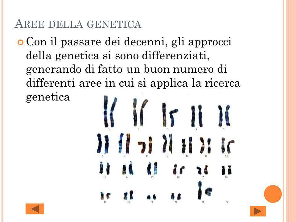 A REE DELLA GENETICA Con il passare dei decenni, gli approcci della genetica si sono differenziati, generando di fatto un buon numero di differenti ar