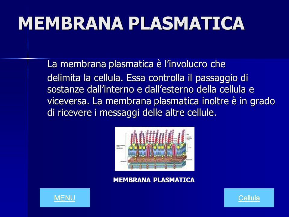 MEMBRANA PLASMATICA La membrana plasmatica è linvolucro che delimita la cellula. Essa controlla il passaggio di sostanze dallinterno e dallesterno del
