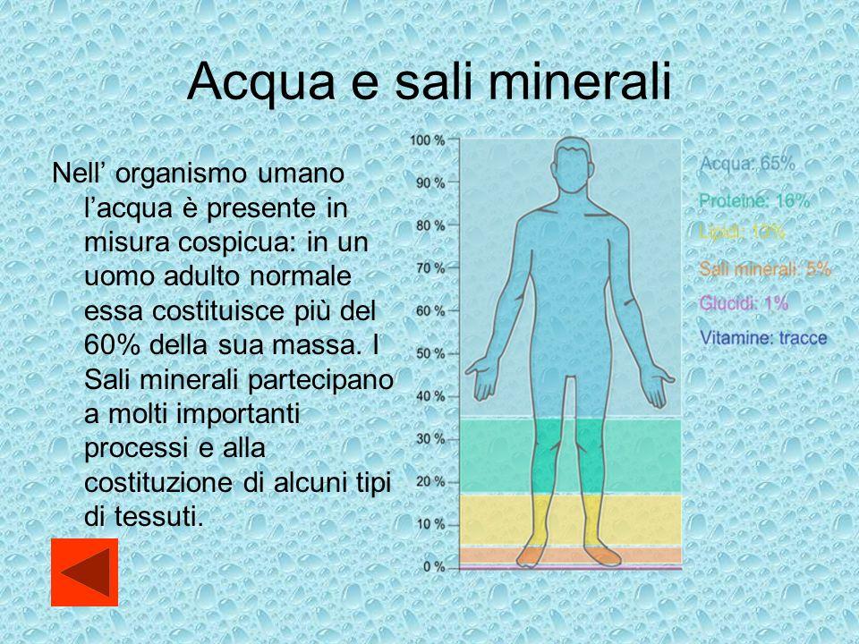 Acqua e sali minerali Nell organismo umano lacqua è presente in misura cospicua: in un uomo adulto normale essa costituisce più del 60% della sua massa.