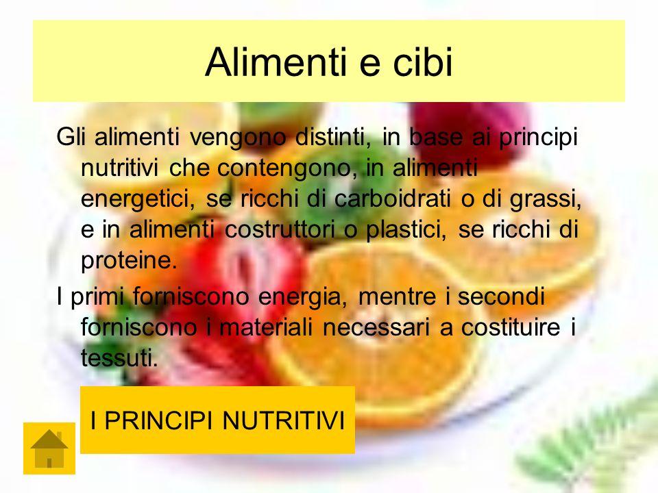 Alimenti e cibi Gli alimenti vengono distinti, in base ai principi nutritivi che contengono, in alimenti energetici, se ricchi di carboidrati o di grassi, e in alimenti costruttori o plastici, se ricchi di proteine.