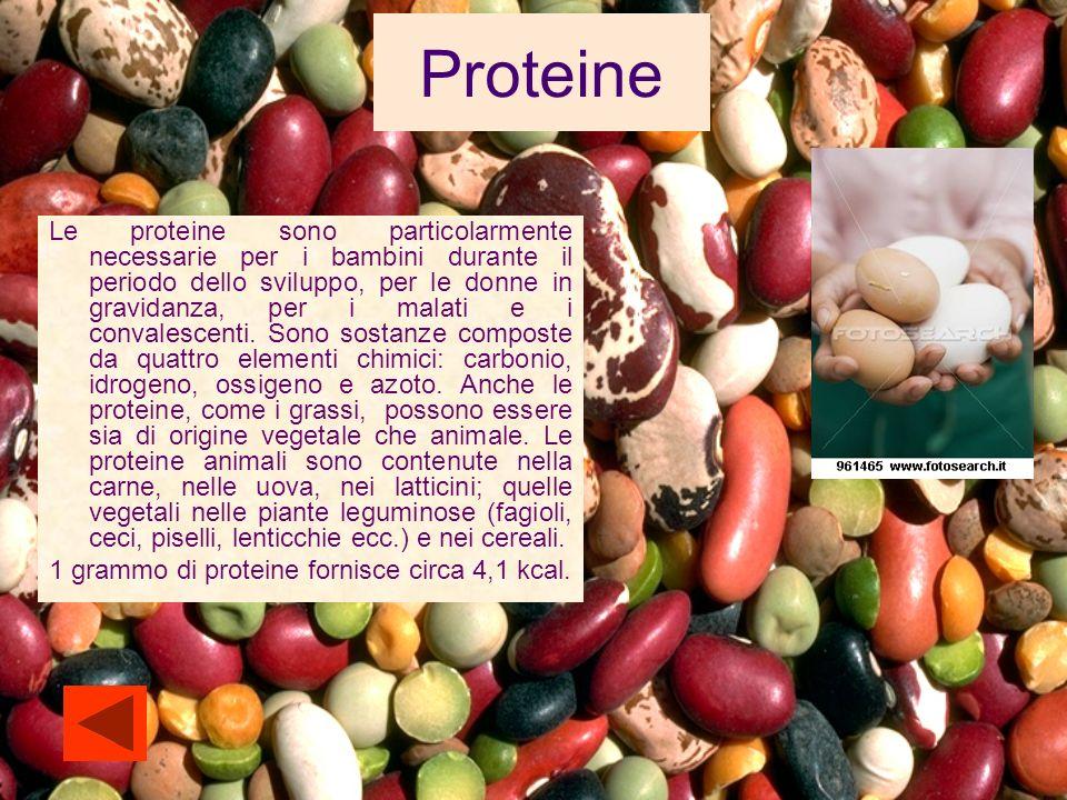 Vitamine Sono sostanze presenti in quantità molto piccola, ma sono di grande importanza.
