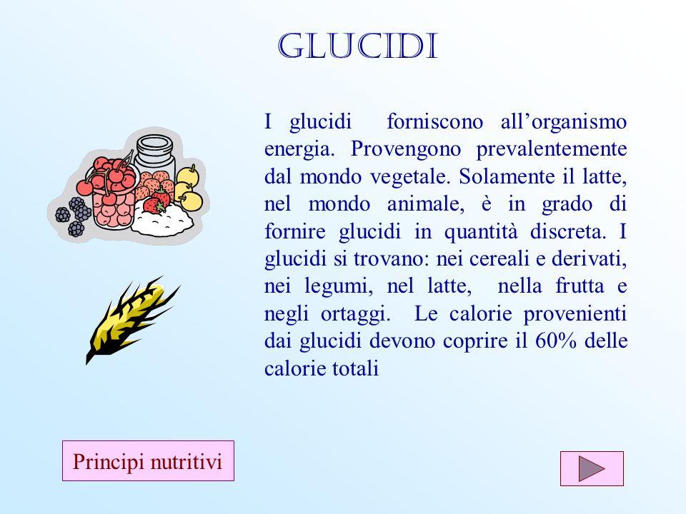 I glucidi forniscono allorganismo energia. Provengono prevalentemente dal mondo vegetale. Solamente il latte, nel mondo animale, è in grado di fornire