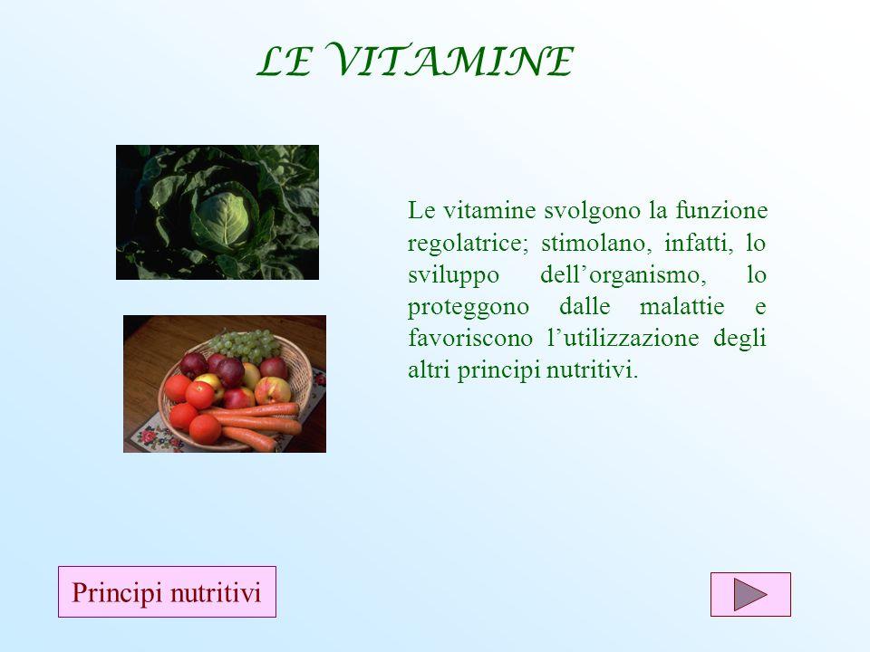 Le vitamine svolgono la funzione regolatrice; stimolano, infatti, lo sviluppo dellorganismo, lo proteggono dalle malattie e favoriscono lutilizzazione