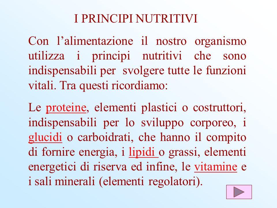 Con lalimentazione il nostro organismo utilizza i principi nutritivi che sono indispensabili per svolgere tutte le funzioni vitali. Tra questi ricordi