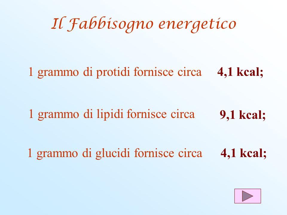 1 grammo di protidi fornisce circa4,1 kcal; 1 grammo di lipidi fornisce circa 9,1 kcal; 1 grammo di glucidi fornisce circa4,1 kcal; Il Fabbisogno ener
