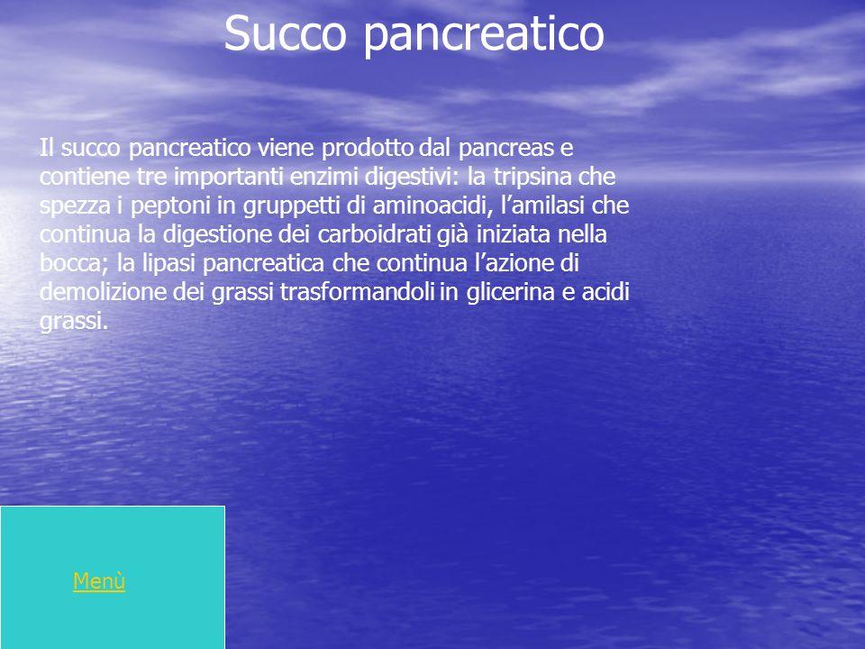 Succo pancreatico Il succo pancreatico viene prodotto dal pancreas e contiene tre importanti enzimi digestivi: la tripsina che spezza i peptoni in gru