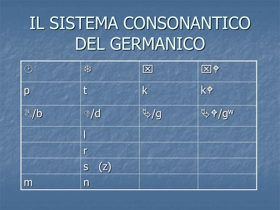 IL SISTEMA CONSONANTICO DEL GERMANICO ptk k /b /b /d /d /g /g /g w /g w l r s (z) mn