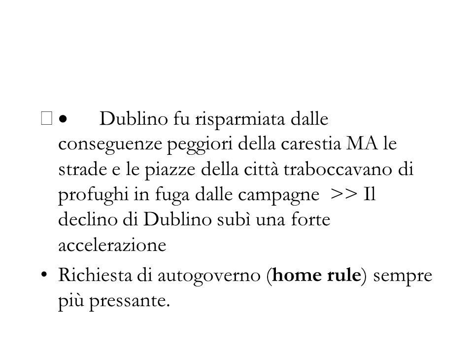 Dublino fu risparmiata dalle conseguenze peggiori della carestia MA le strade e le piazze della città traboccavano di profughi in fuga dalle campagne