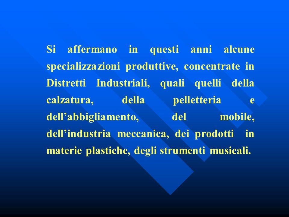 Nelle Marche, negli ultimi tre decenni, si è affermato un processo di industrializzazione delleconomia, caratterizzato dalla nascita di piccole aziende industriali ed artigiane che hanno dato luogo ad uno sviluppo economico, virtuoso, del territorio, tale da costituire un modello da studiare.