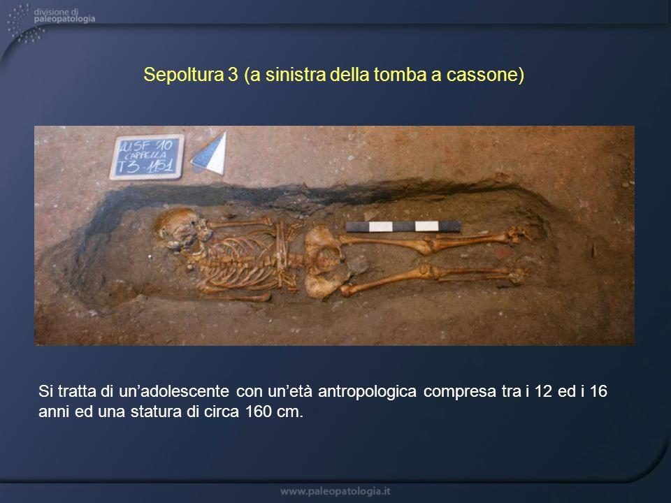 Si tratta di unadolescente con unetà antropologica compresa tra i 12 ed i 16 anni ed una statura di circa 160 cm. Sepoltura 3 (a sinistra della tomba