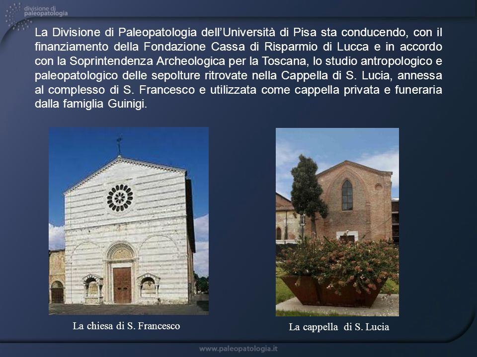 La chiesa di S. Francesco La Divisione di Paleopatologia dellUniversità di Pisa sta conducendo, con il finanziamento della Fondazione Cassa di Risparm