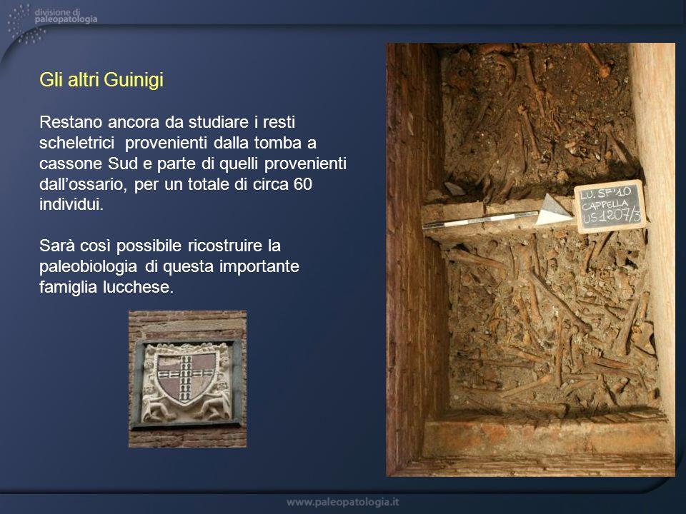 Gli altri Guinigi Restano ancora da studiare i resti scheletrici provenienti dalla tomba a cassone Sud e parte di quelli provenienti dallossario, per