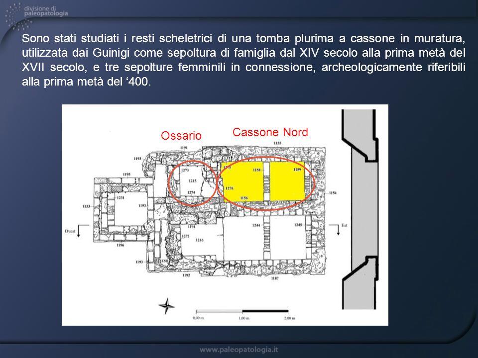 Cassone Nord Ossario I resti scheletrici ritrovati nellossario e nella tomba a cassone, dove si sono accumulati in seguito a deposizioni successive nel tempo, sono risultati non in connessione, per cui non è stato possibile effettuare la ricostruzione individuale degli scheletri.