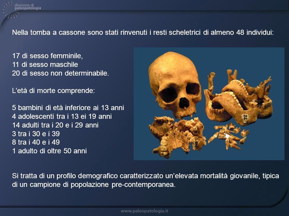 I dati ottenuti indicano una probabile identificazione con la prima moglie di Paolo Guinigi, Maria Caterina degli Antelminelli (+1400) che, in base ai documenti, morì attorno ai 12 anni di età, forse di peste.