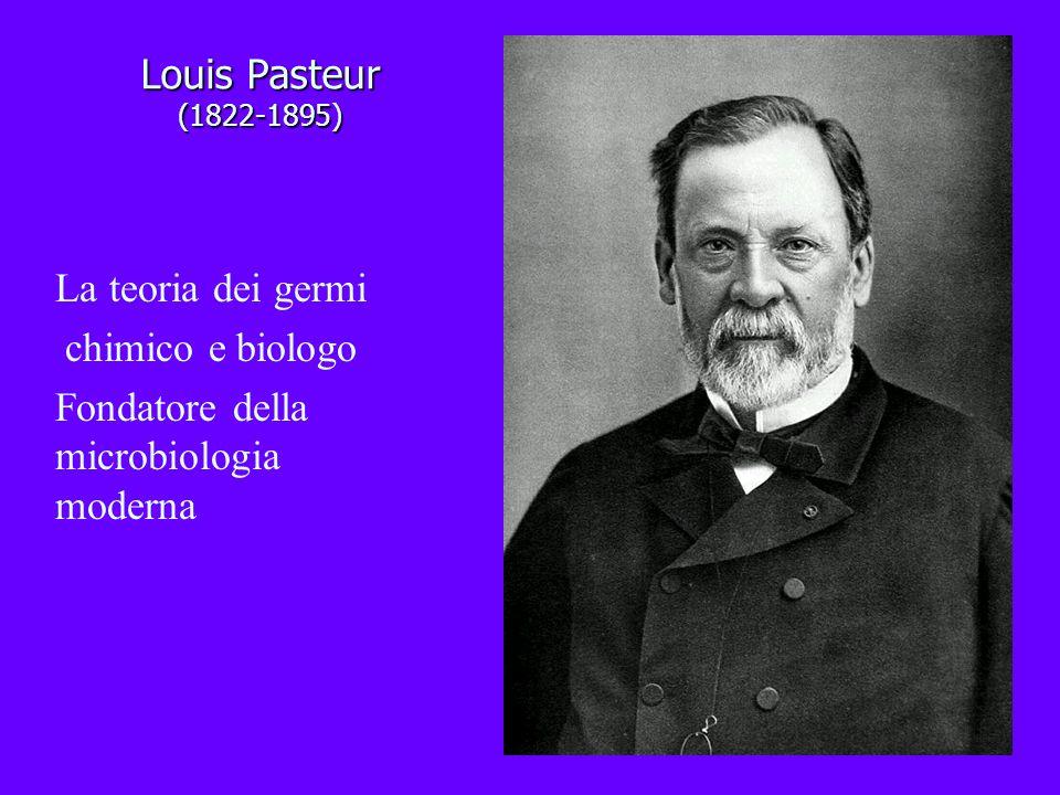 Louis Pasteur (1822-1895) La teoria dei germi chimico e biologo Fondatore della microbiologia moderna