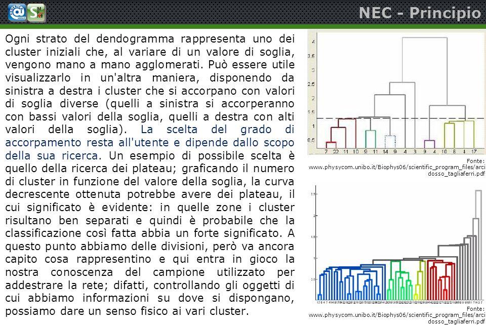 NEC - Principio Ogni strato del dendogramma rappresenta uno dei cluster iniziali che, al variare di un valore di soglia, vengono mano a mano agglomera
