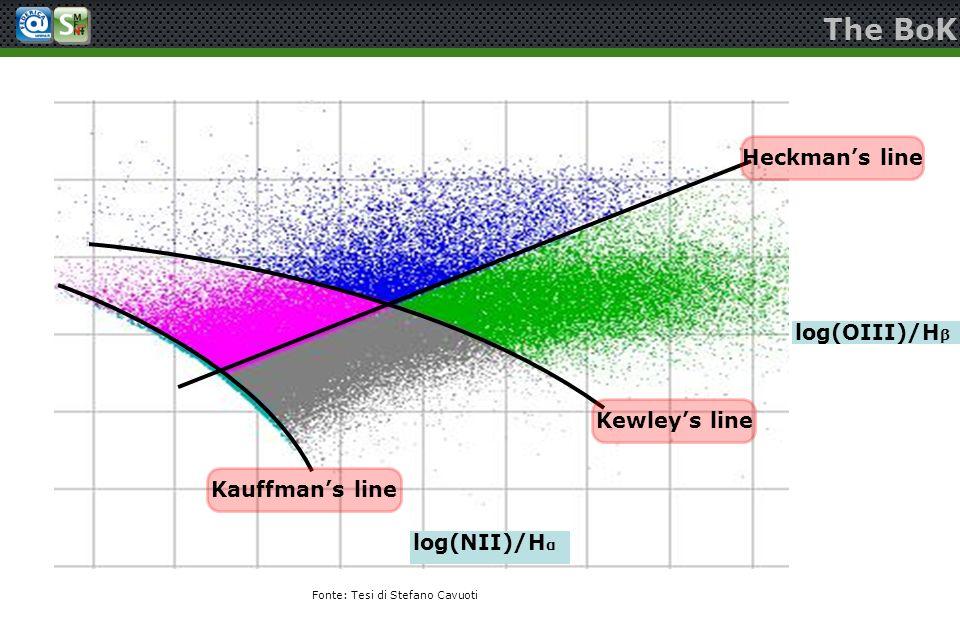 The BoK Kewleys line Heckmans line Kauffmans line log(NII)/H α log(OIII)/H β Fonte: Tesi di Stefano Cavuoti