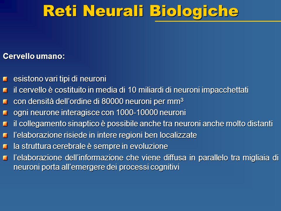 Reti Neurali Biologiche Cervello umano: esistono vari tipi di neuroni il cervello è costituito in media di 10 miliardi di neuroni impacchettati con de
