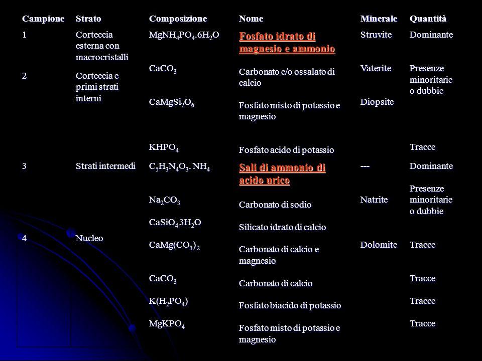 CampioneStratoComposizioneNomeMineraleQuantità 1 Corteccia esterna con macrocristalli MgNH 4 PO 4.6H 2 O CaCO 3 CaMgSi 2 O 6 KHPO 4 Fosfato idrato di