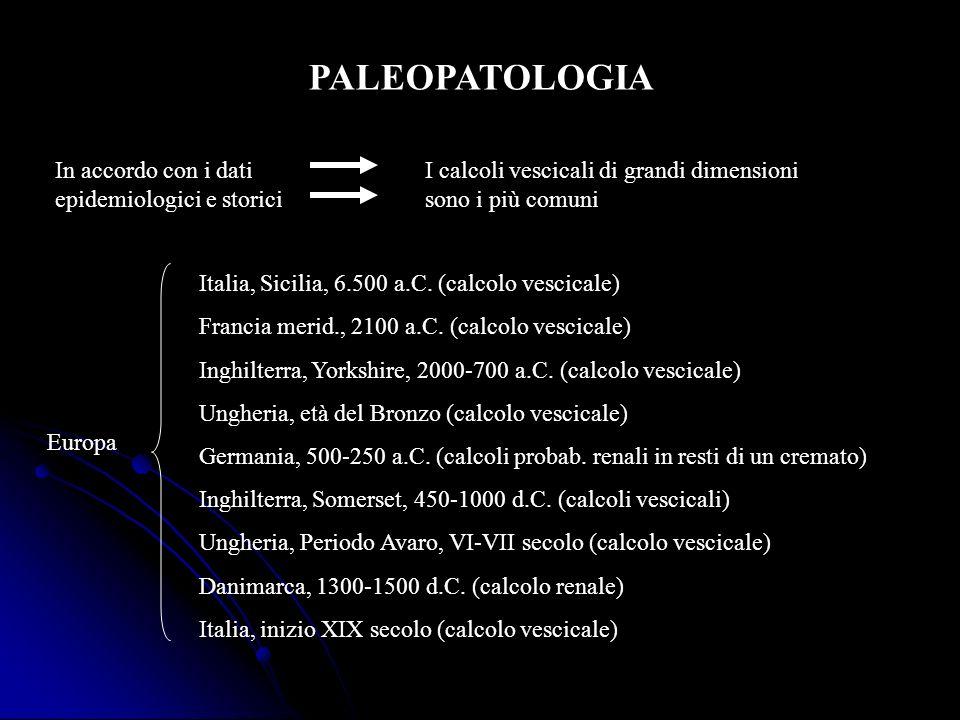 PALEOPATOLOGIA In accordo con i dati epidemiologici e storici I calcoli vescicali di grandi dimensioni sono i più comuni Europa Italia, Sicilia, 6.500