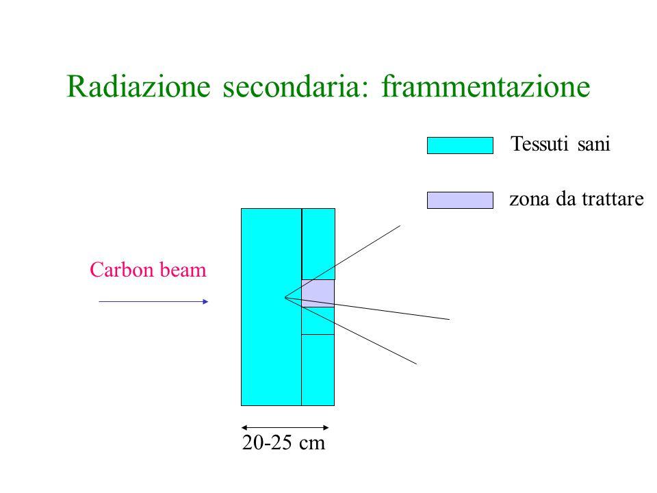 Radiazione secondaria: frammentazione Carbon beam 20-25 cm zona da trattare Tessuti sani