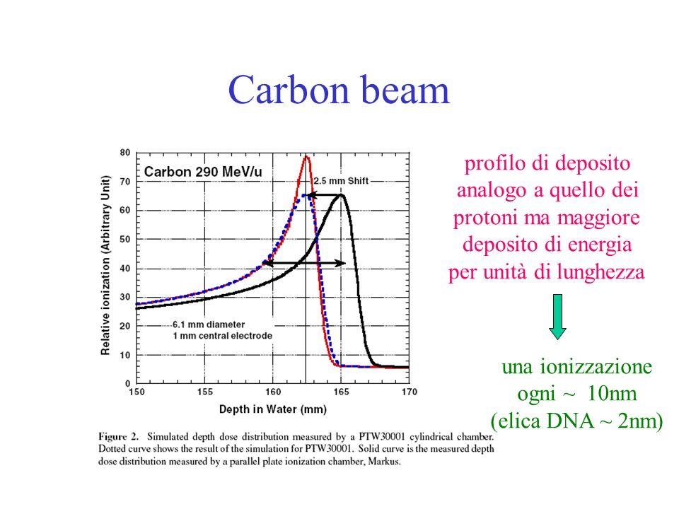 Carbon beam profilo di deposito analogo a quello dei protoni ma maggiore deposito di energia per unità di lunghezza una ionizzazione ogni ~ 10nm (elic