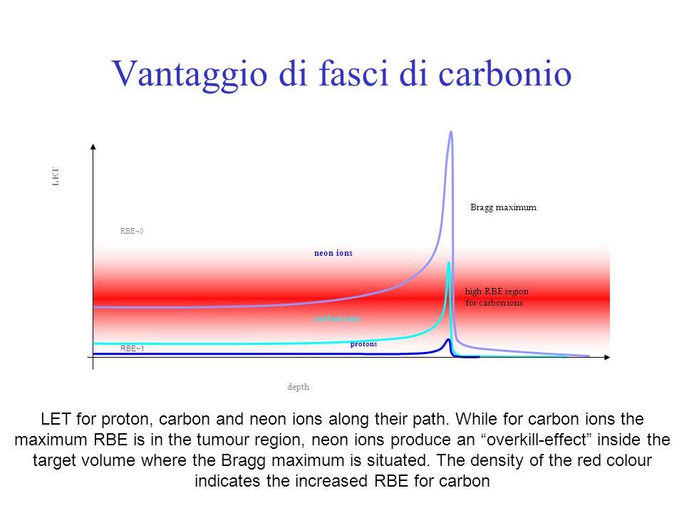 Vantaggio di fasci di carbonio high RBE region for carbon ions LET neon ions carbon ions depth RBE~0 RBE~1 Bragg maximum protons LET for proton, carbo