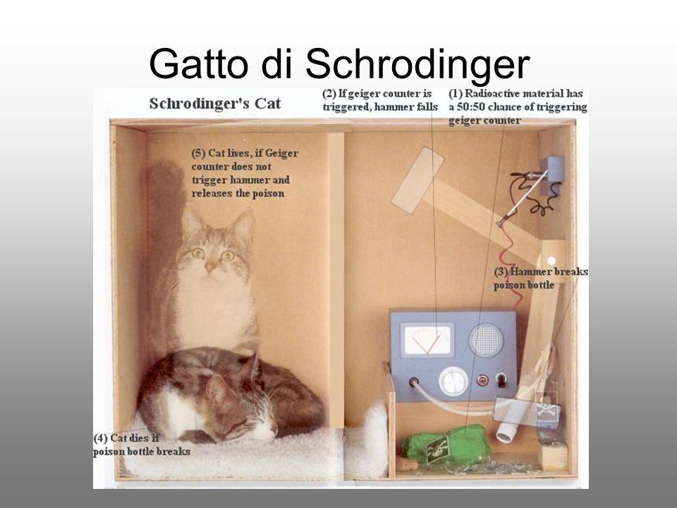 Gatto di Schrodinger