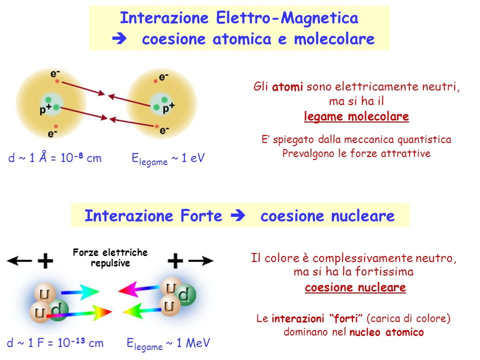 Interazione Elettro-Magnetica coesione atomica e molecolare Gli atomi sono elettricamente neutri, ma si ha il legame molecolare E spiegato dalla meccanica quantistica Prevalgono le forze attrattive d ~ 1 Å = 10 -8 cm E legame ~ 1 eV Forze elettriche repulsive d ~ 1 F = 10 -13 cm E legame ~ 1 MeV Il colore è complessivamente neutro, ma si ha la fortissima coesione nucleare Le interazioni forti (carica di colore) dominano nel nucleo atomico Interazione Forte coesione nucleare